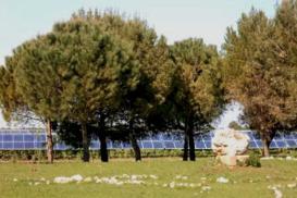 Solarpark Scorrano